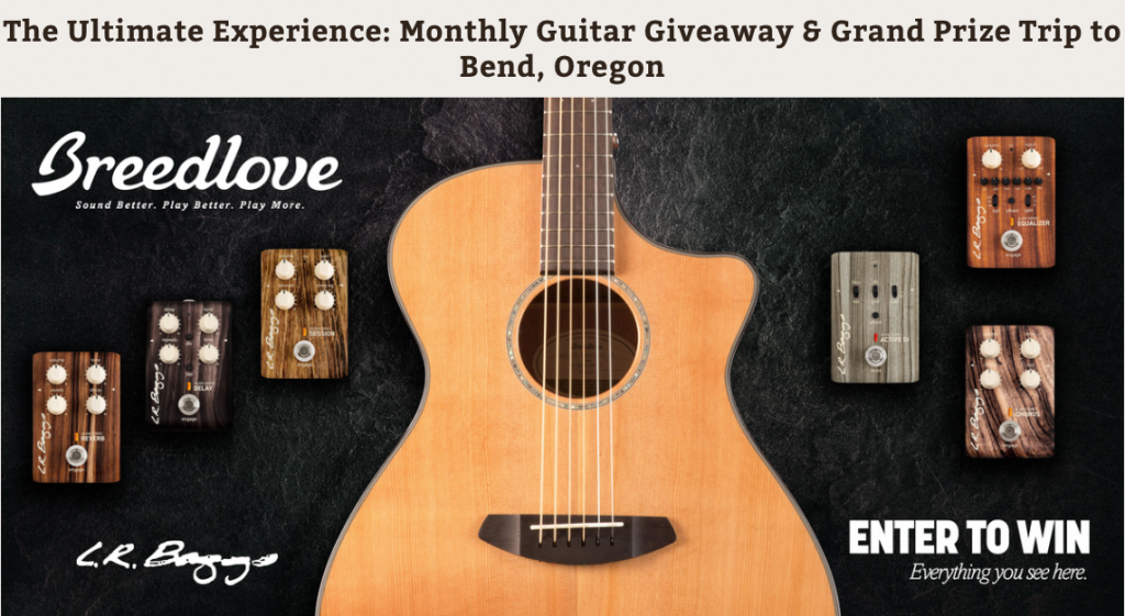 There is a Secret Url to Win a Magnificent Breedlove Guitar - Jerry